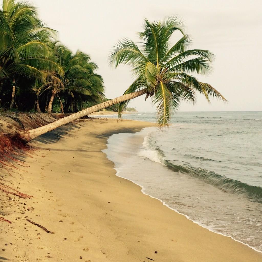 puerto-rico-tourism-rincon-beach