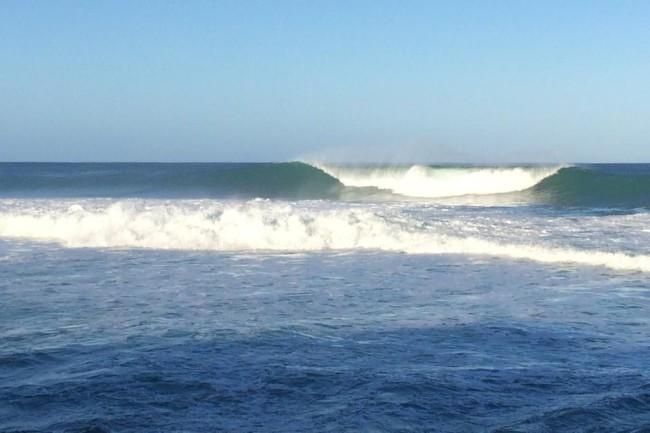 surfing-rincon